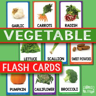 Vegetable Flashcards with Real Life Photos