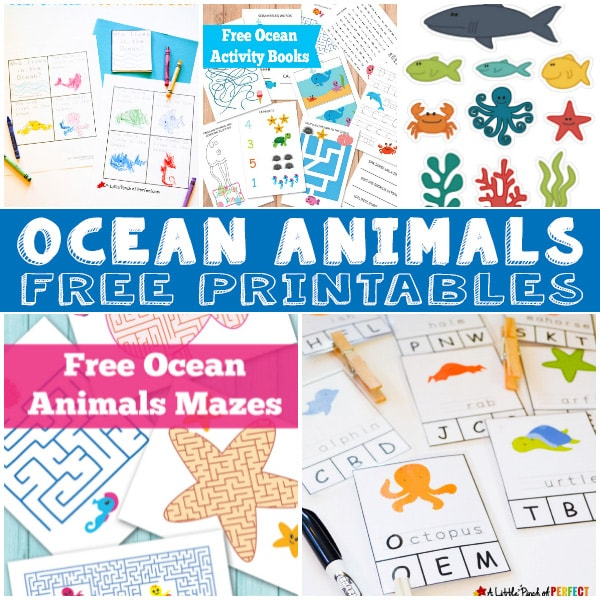 15+ Free Ocean Animal Printables for Kids