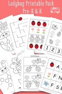 Ladybug Printable Preschool and Kindergarten Pack