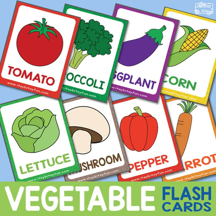 graphic relating to Vegetable Printable identified as Vegetable Flashcards - Itsy Bitsy Entertaining