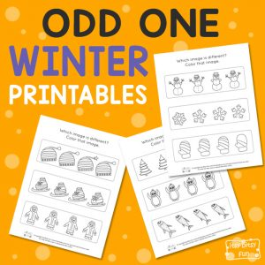 Winter Odd One Out Worksheet