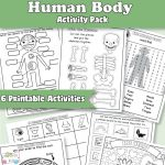 Anatomy Worksheets for Kids
