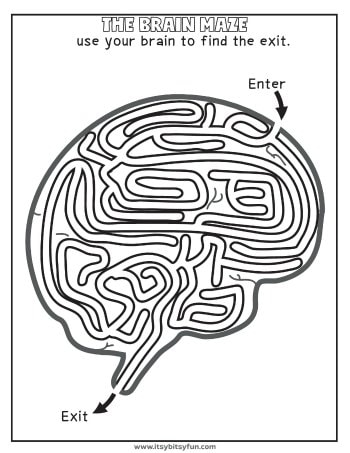 human body worksheets  itsy bitsy fun a cool brain maze to solve