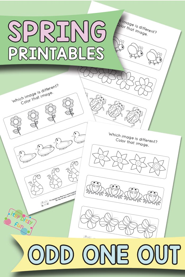 Spring Themed Odd One Out Printables for Kids
