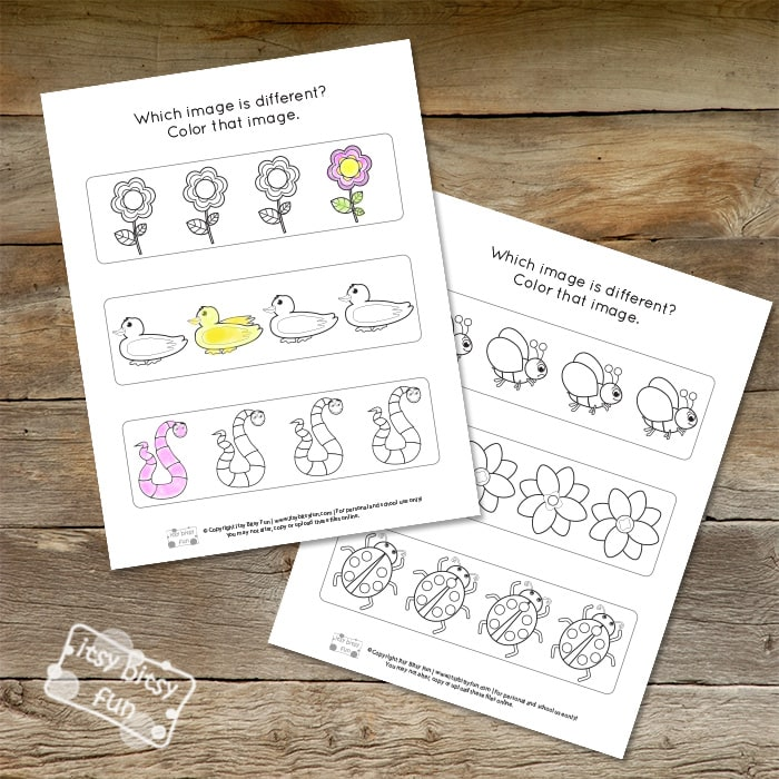 Spring Odd One Out Worksheets