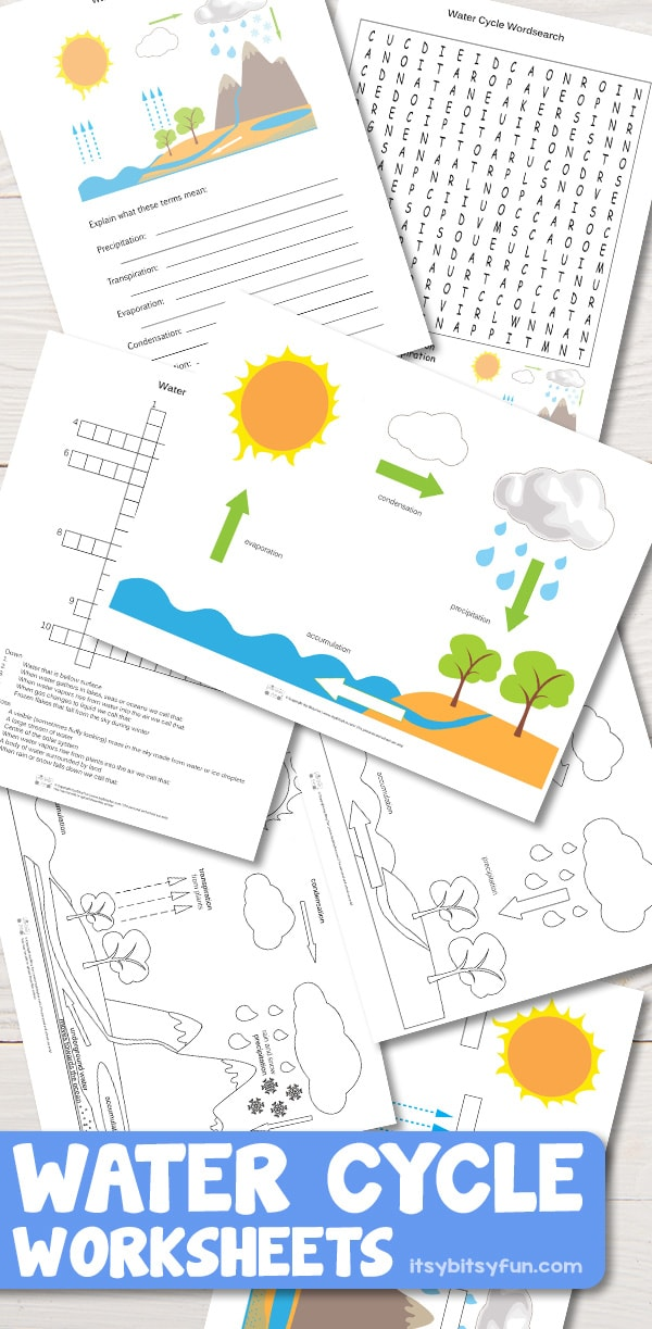Water Cycle Worksheets for Kids #kindergartenworksheets #worksheetsforkids #freeprintables