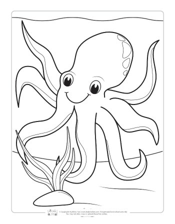 An octopus coloring page for kids.