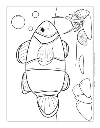 A clown fish coloring page for kids.