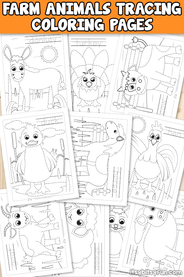 Farm animals tracing coloring pages for kids. Fun tracing worksheets for kids to practice tracing words and images. You get 10 cute farm animal themed designs.