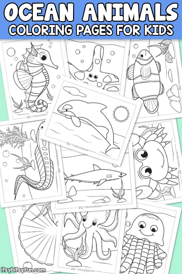 Ocean Animals Coloring Pages For Kids - Itsybitsyfun.com