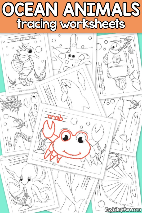Ocean Animals Tracing Worksheets for Kindergarten and Preschool