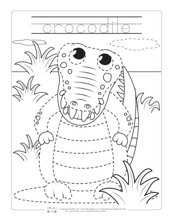 Safari and Jungle Animals Tracing
