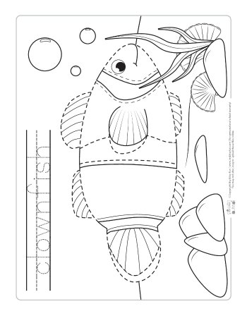 Clown fish tracing worksheet.