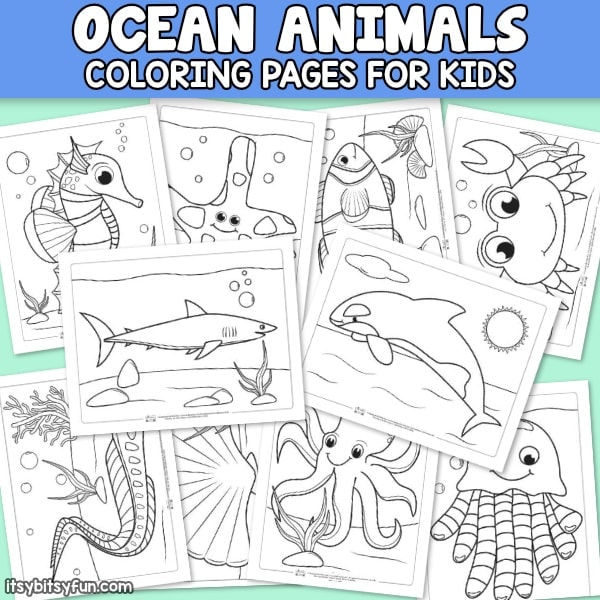 Ocean Animals Coloring Pages for Kids