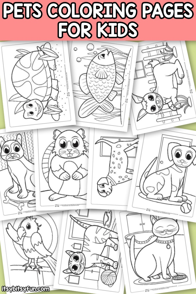 Pets Coloring Pages For Kids Itsy Bitsy Fun