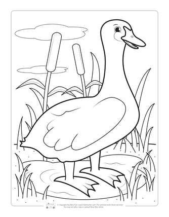 Duck Coloring Page for Kids