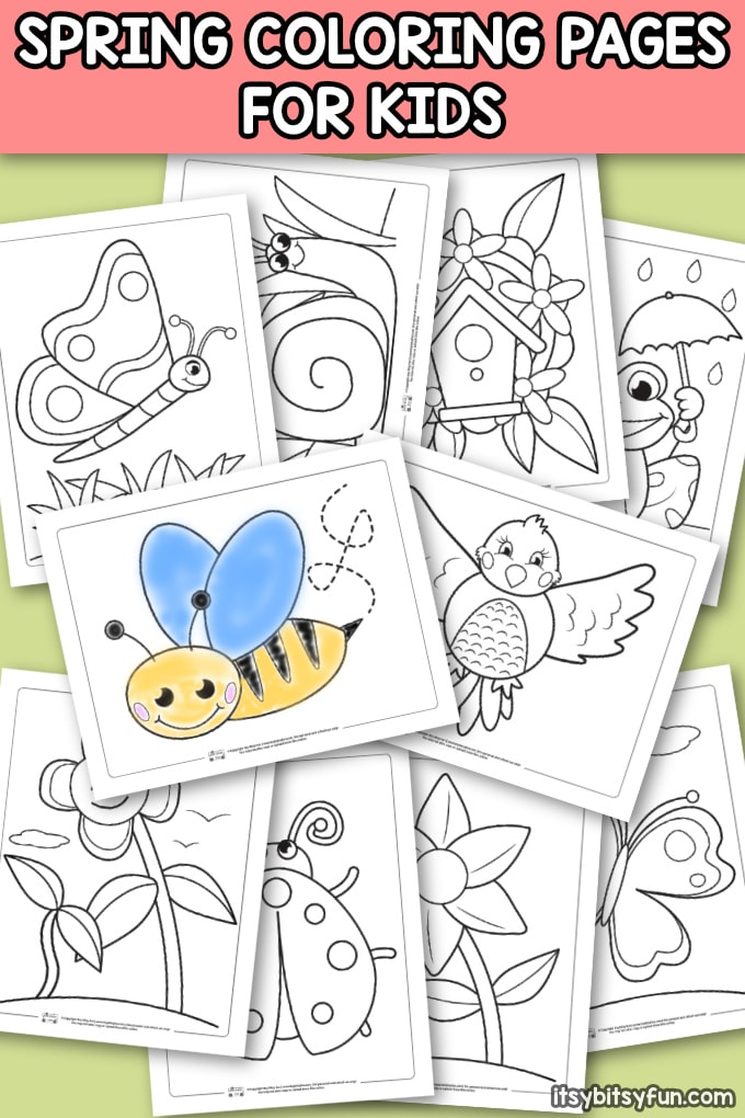 picture regarding Spring Coloring Sheets Printable named Spring Coloring Internet pages for Small children - Itsy Bitsy Entertaining
